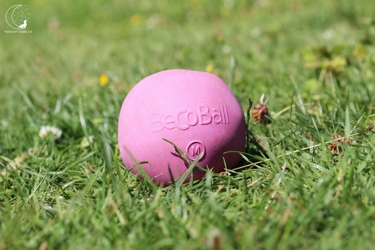 Eco-Friendly Beco Ball dog toy in Pink