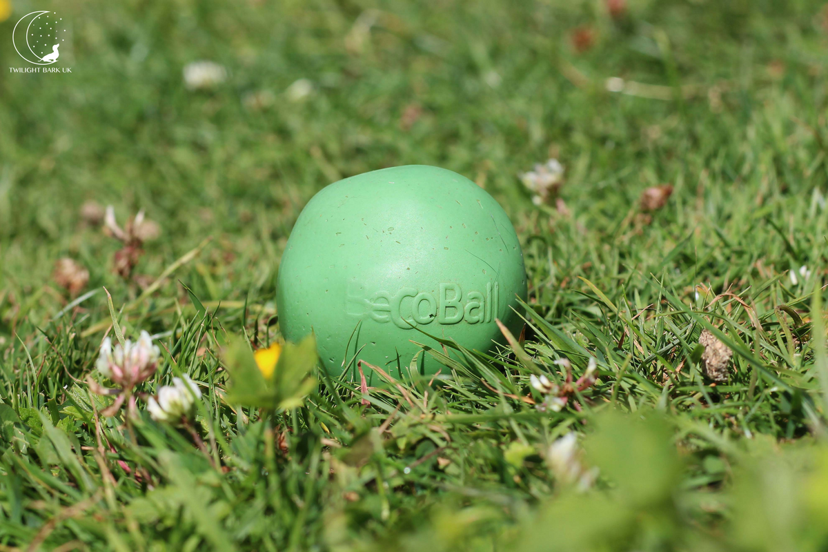 Eco-Friendly Beco Ball dog toy in green