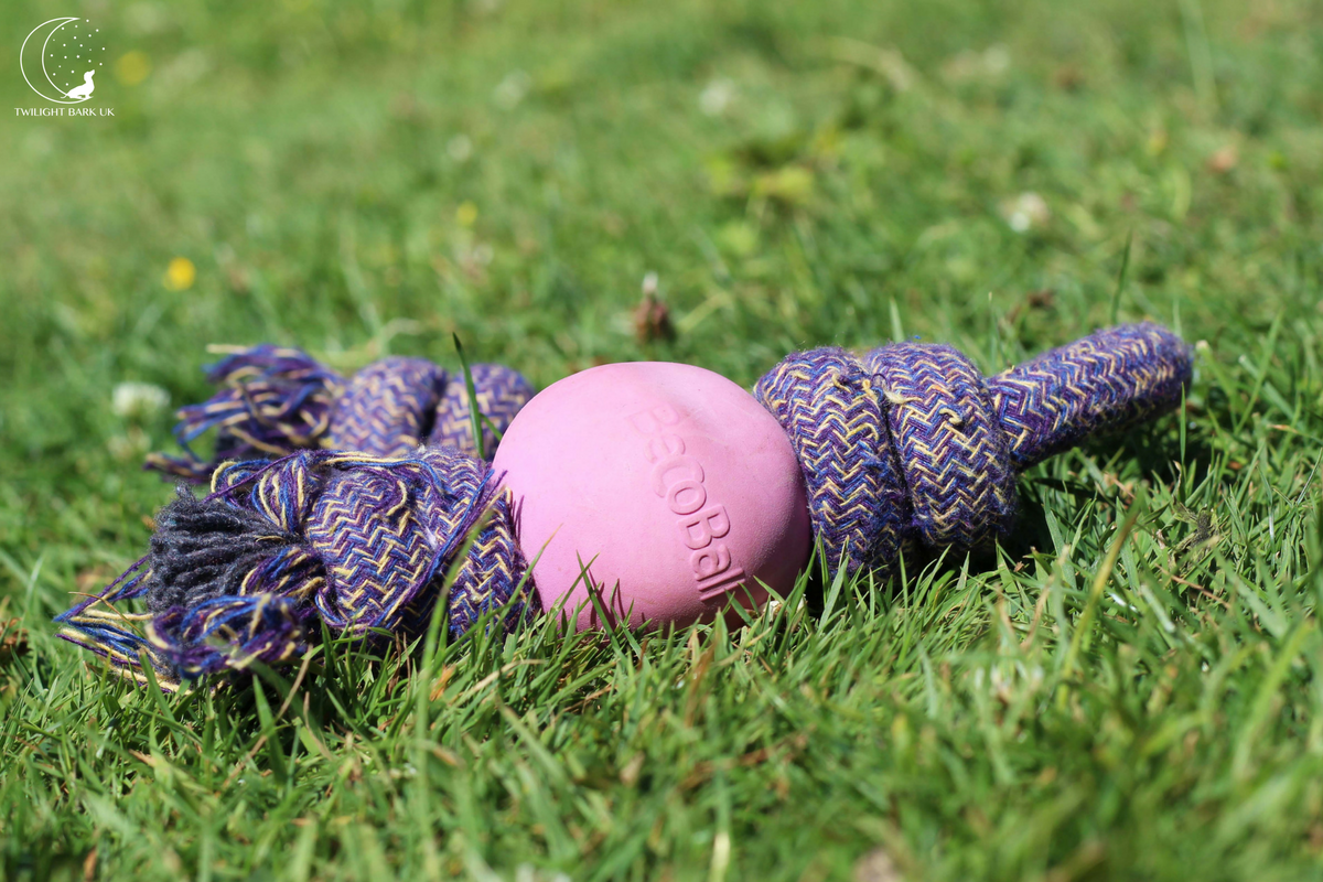 Eco-Friendly Dog rope toy from Beco Pets