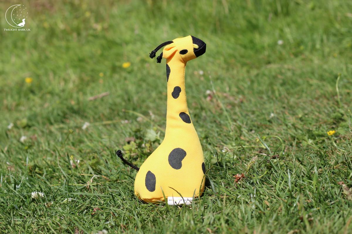 Eco-Friendly dog toy, George The Giraffe